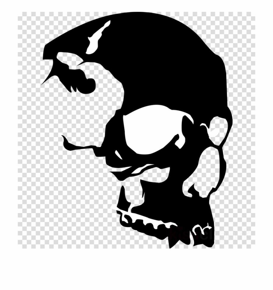 Transparent skull clipart banner transparent library Download Vector Skull Clipart Skull Clip Art - Transparent ... banner transparent library