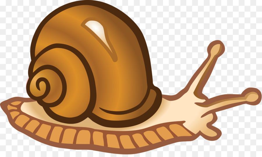 Transparent snail clipart freeuse download Snail Clip Art Snails Png Download 4000 2362 Free ... freeuse download