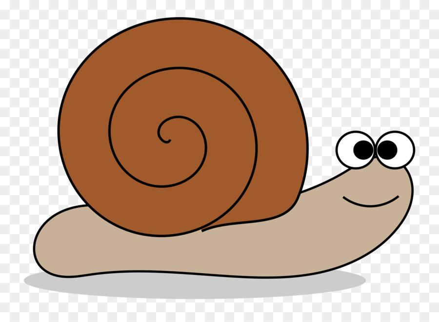 Transparent snail clipart vector freeuse Snail Cartoon png download - 2400*1727 - Free Transparent ... vector freeuse