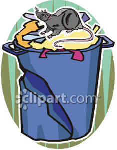 Rat Going Through Garbage - Royalty Free Clipart Picture picture freeuse stock
