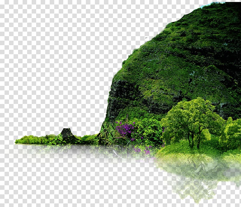 Tree beside water clipart black and white clip black and white download Green tree beside hill, Landscape Nature Icon, Creative ... clip black and white download
