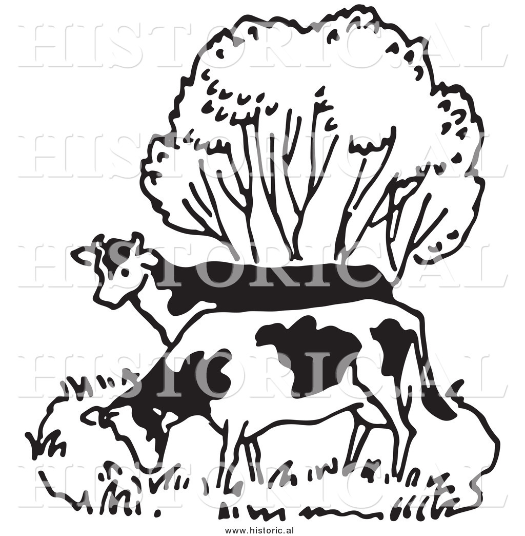 Tree beside water clipart black and white banner free library Illustration of a Couple of Cows Grazing Beside a Tree ... banner free library