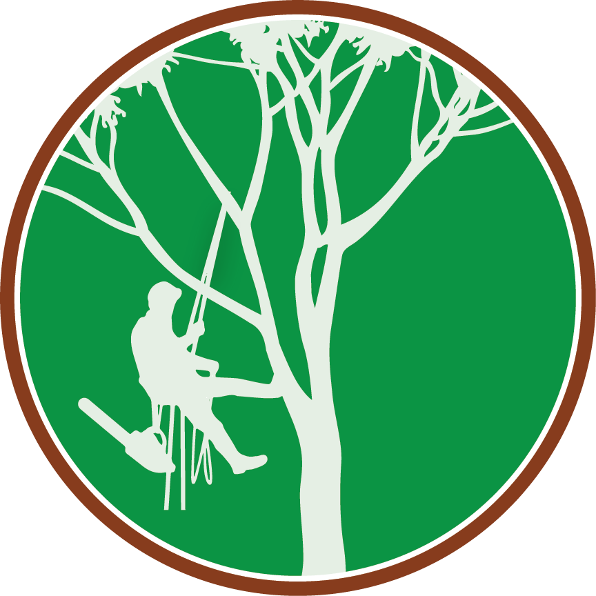 Paul The Tree Climber Icon | Paul The Tree Climber png