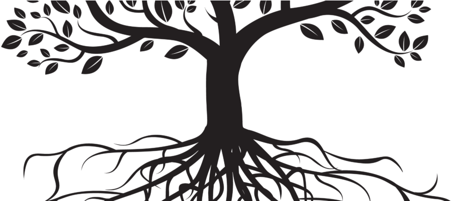 Tree clipart black and white with roots png library library HD 31 Jan 2017 - Trees With Roots Black And White Clipart ... png library library