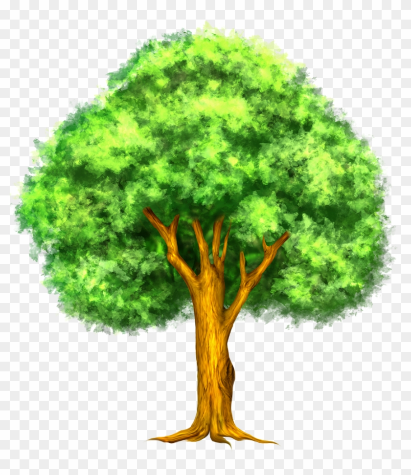 Tree clipart free download png royalty free stock Branches Clipart Family Tree Of Picture Of Tree Clipart ... png royalty free stock