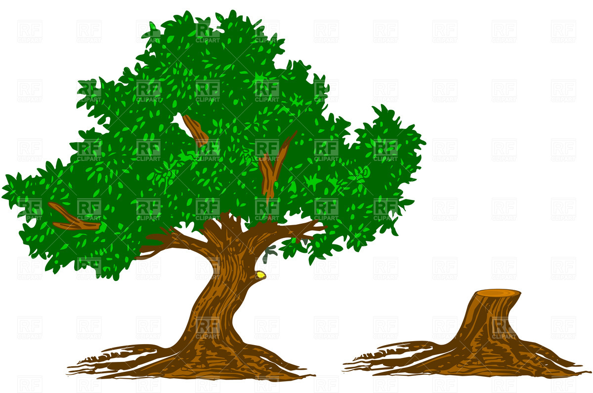 Tree clipart free download clip art download Free Free Tree Images, Download Free Clip Art, Free Clip Art ... clip art download