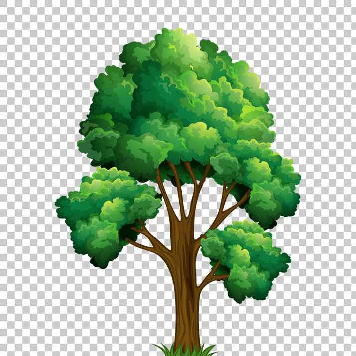 Tree clipart free download svg transparent download Pine Tree Clipart PNG Image Free Download searchpng.com svg transparent download