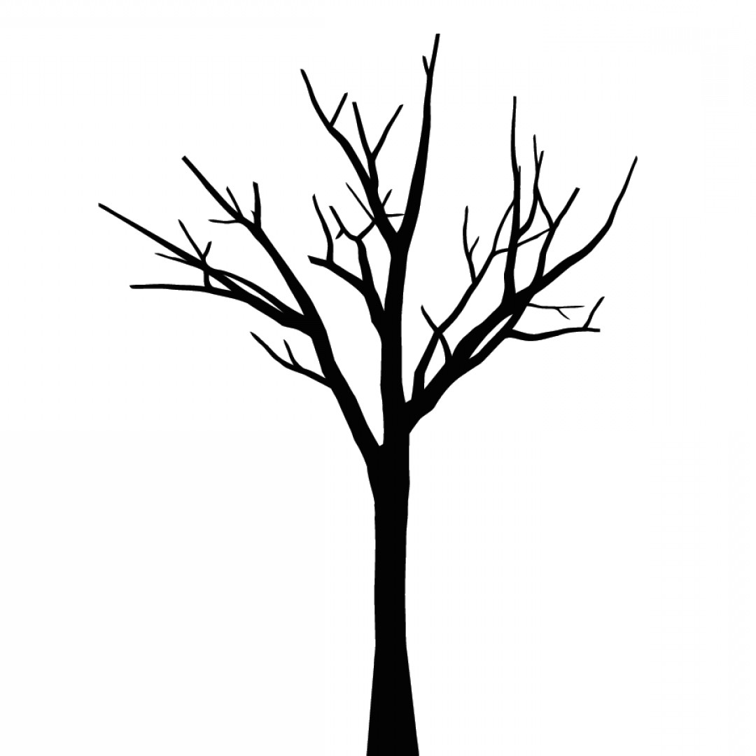 Tree with no leaves clipart black and white svg royalty free library Tree No Leaves Drawing | Free download best Tree No Leaves ... svg royalty free library