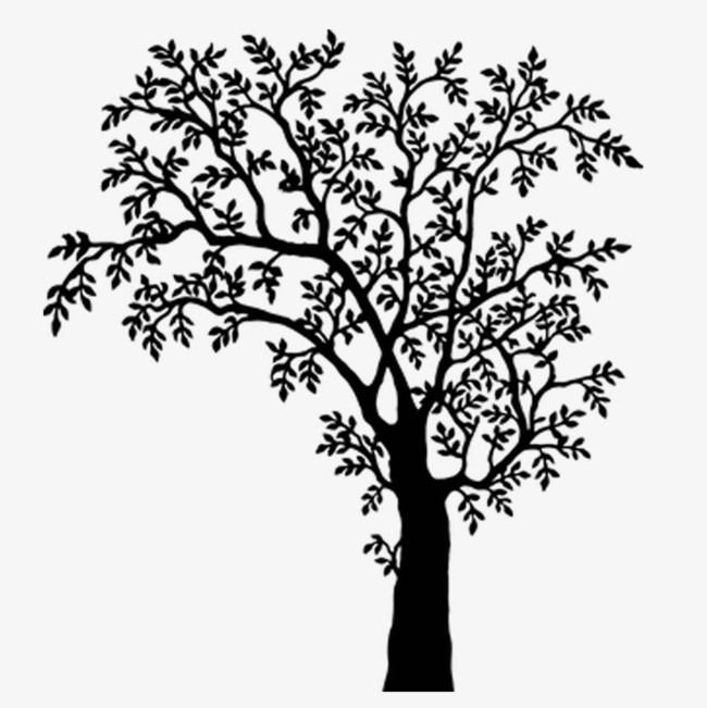 Black And White Tree Branches, Tree Clipart, Plant, Cold PNG ... clipart transparent download