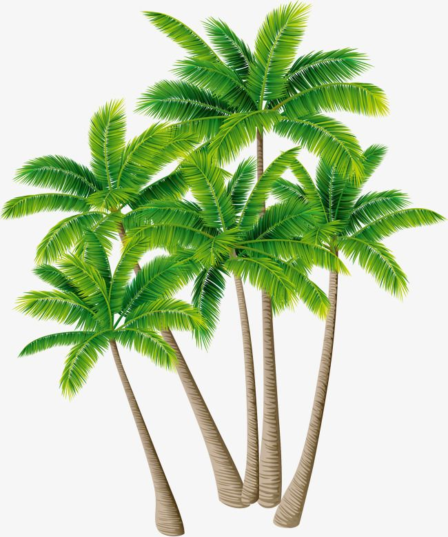 Tree Vector Material Green Plants, Tree Clipart, Plants ... image black and white library