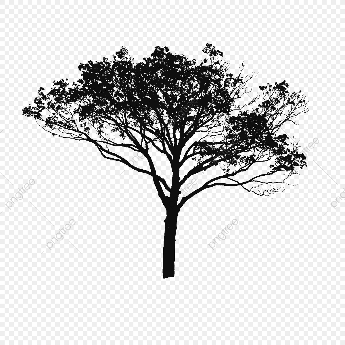 Tree Vector Black And White, Tree Vector Clipart, Tree ... image black and white