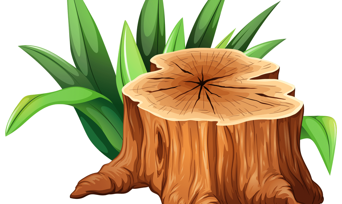 Tree cut down clipart freeuse Wooden Stump Art | Wooden Thing freeuse