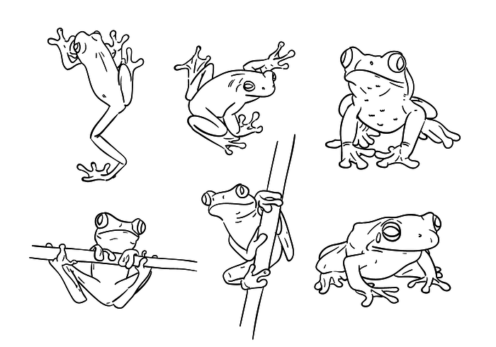 Scribble Green Tree Frog Vectors - Download Free Vectors ... image royalty free download