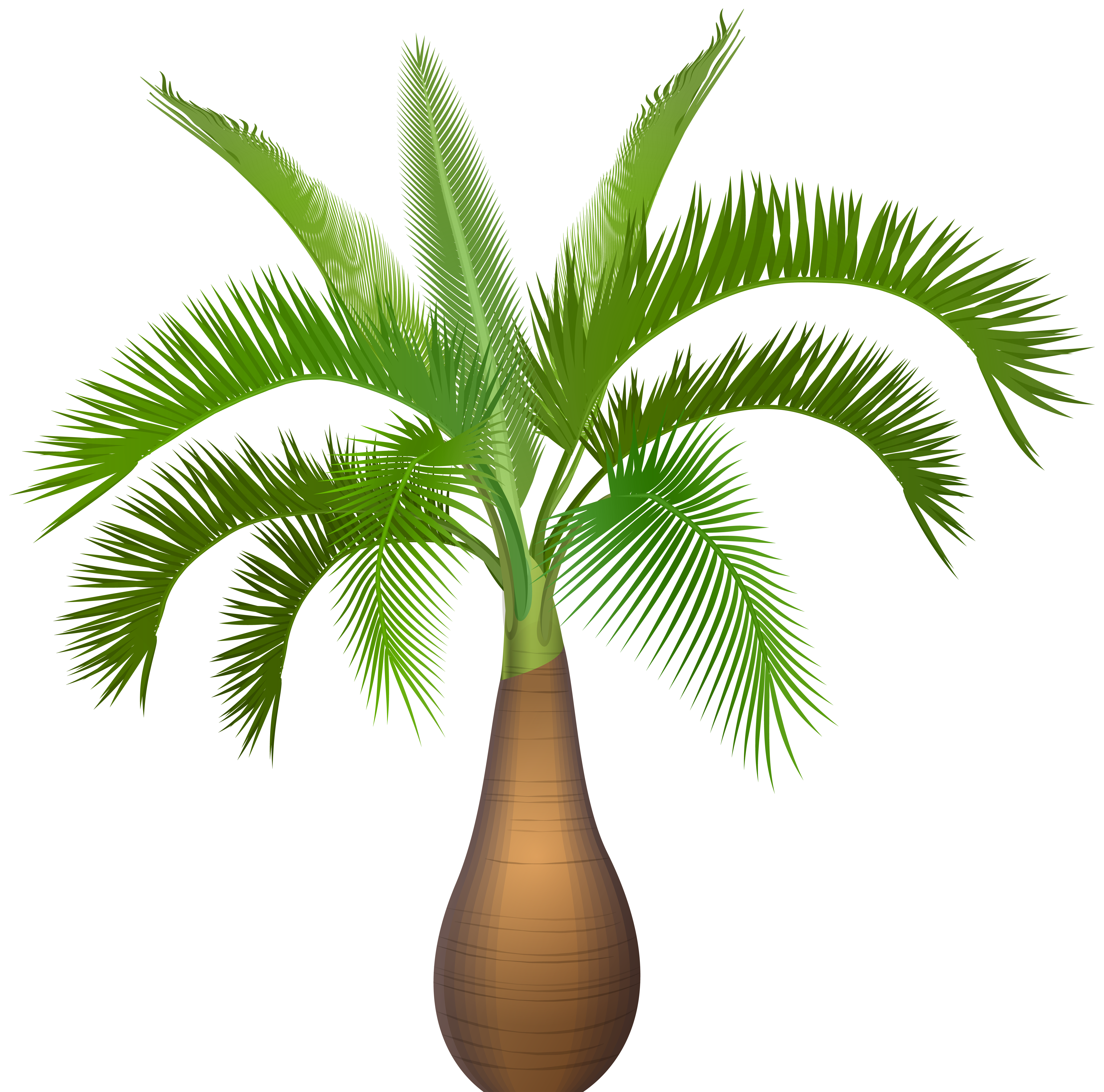 Tree growing clipart clip library stock Palm Tree Plant PNG Clip Art Image | Gallery Yopriceville - High ... clip library stock