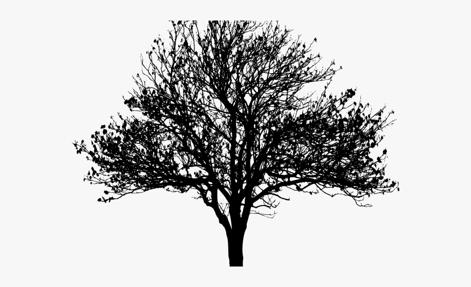 Tree in winter clipart silhouette svg royalty free stock Winter Clipart Silhouette - Silhouette Tree Png Free ... svg royalty free stock