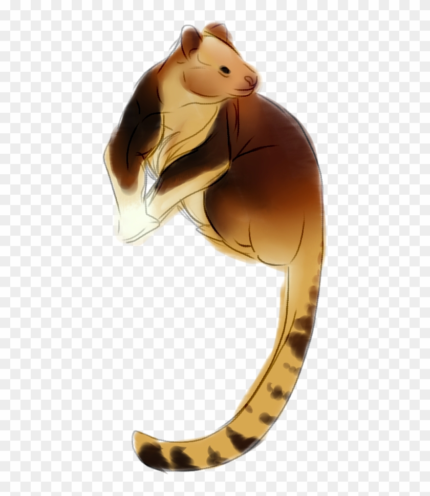 Tree kangaroo clipart jpg library p] Tree Kangaroo - Tree Kangaroo Png, Transparent Png ... jpg library