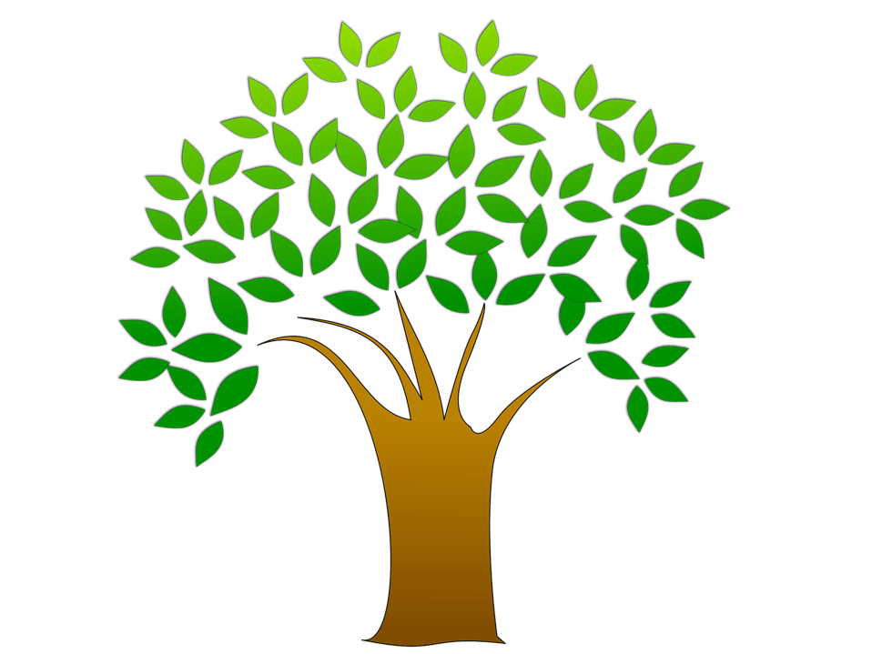 Tree leaves images clipart vector freeuse Tree with leaves clipart 1 » Clipart Portal vector freeuse