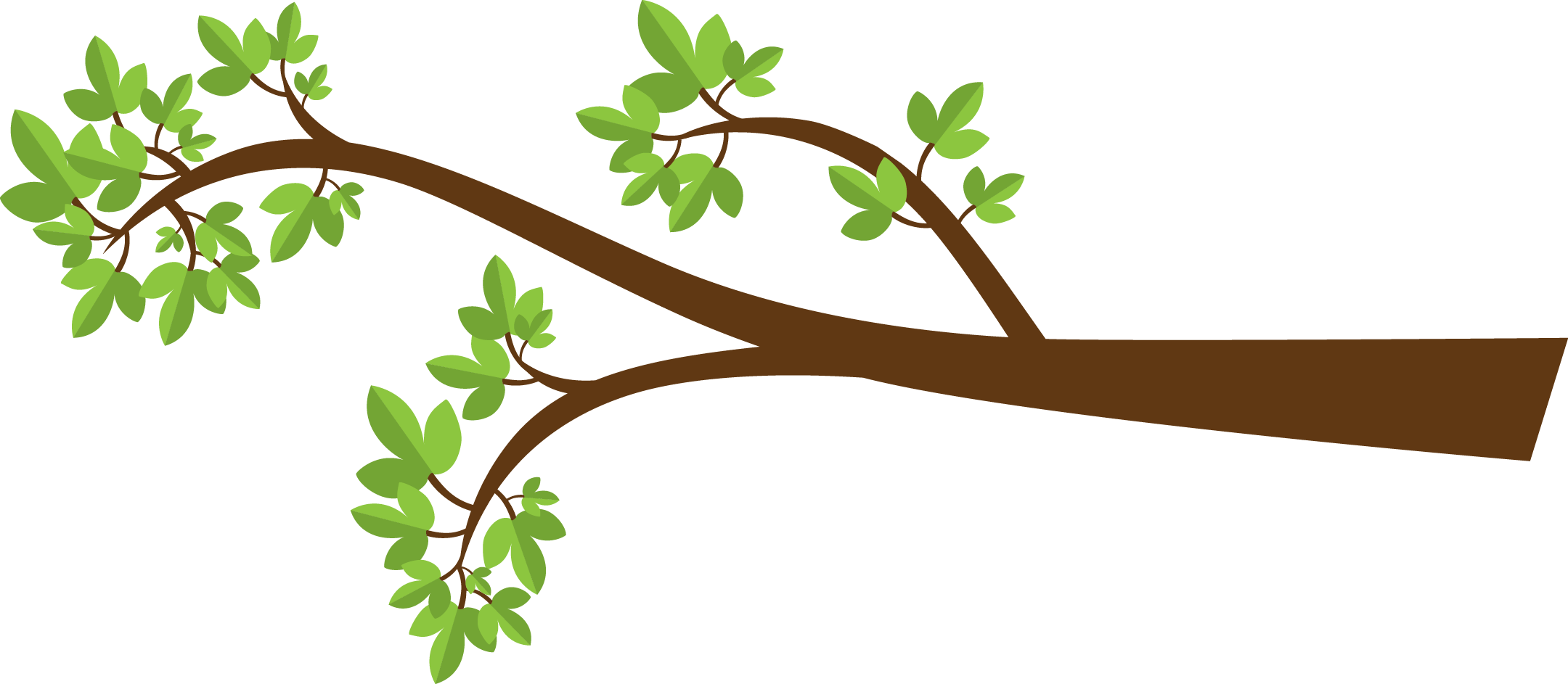 Tree limb with flowers clipart transparent background