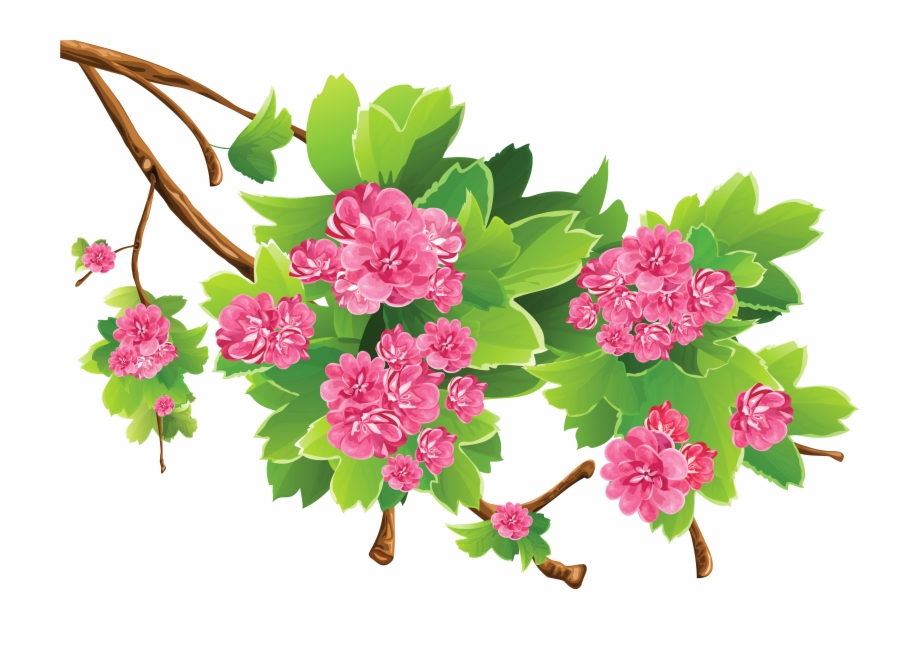 Tree limb with flowers clipart transparent background jpg transparent Spring Branch Png - Spring Clipart Transparent Background ... jpg transparent