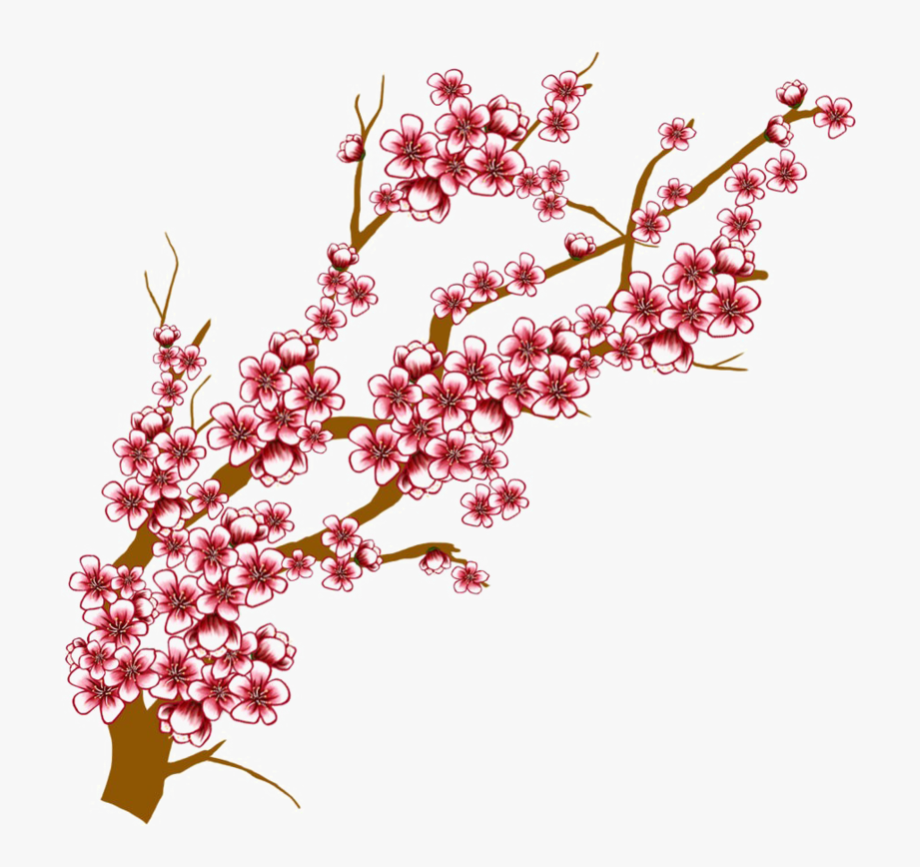 Tree limb with flowers clipart transparent background clip art black and white Japanese Flowering Cherry Transparent Background - Clipart ... clip art black and white