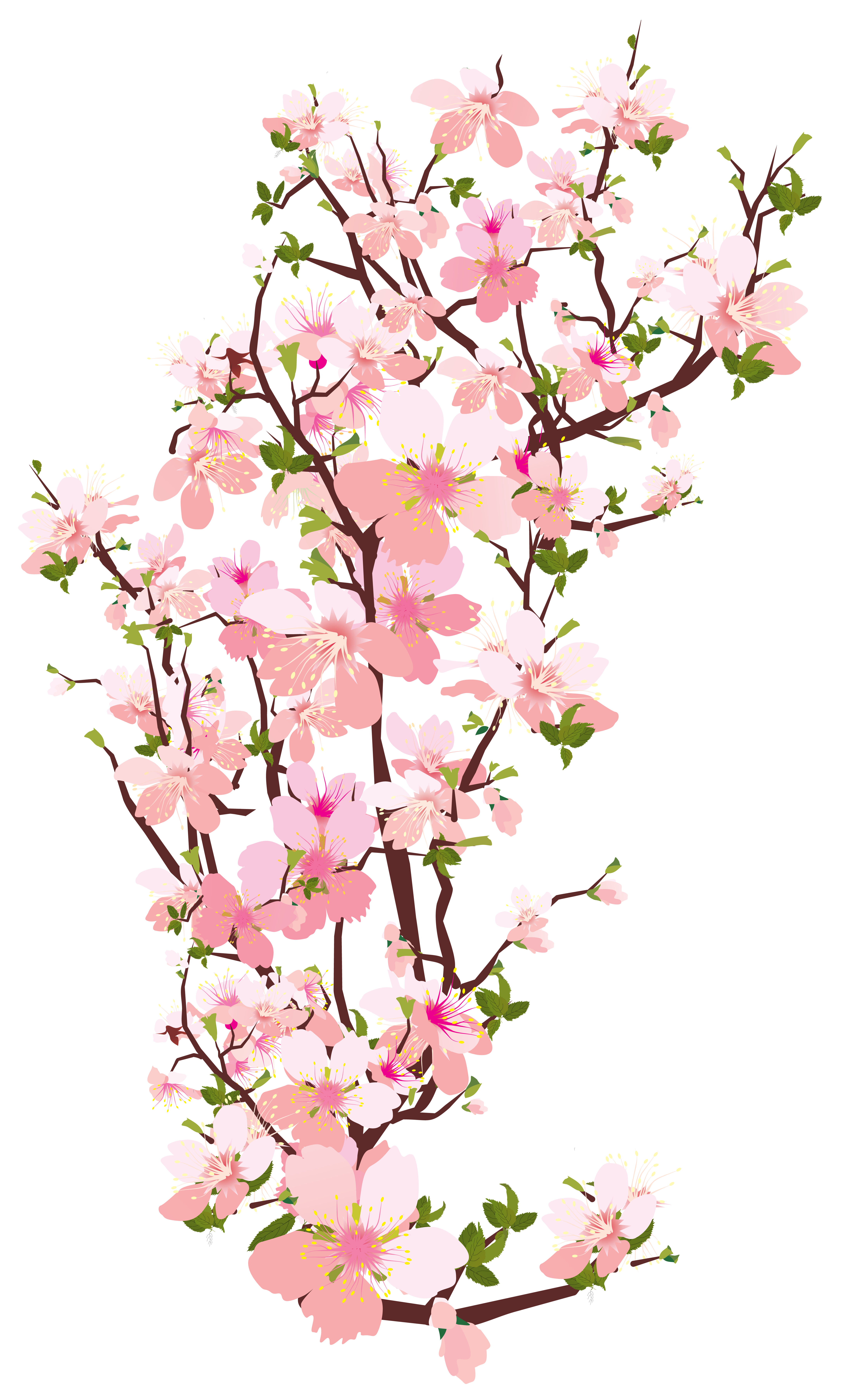 Tree limb with flowers clipart transparent background clip art freeuse library Pin by Can Sae-tang on peach blossom in 2019 | Art, Art ... clip art freeuse library
