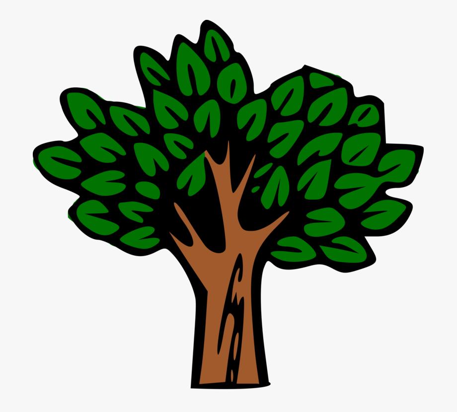 Tree looks ne forest clipart banner freeuse library Tree Tropical Rainforest Plants Vegetation - Tree Clip Art ... banner freeuse library