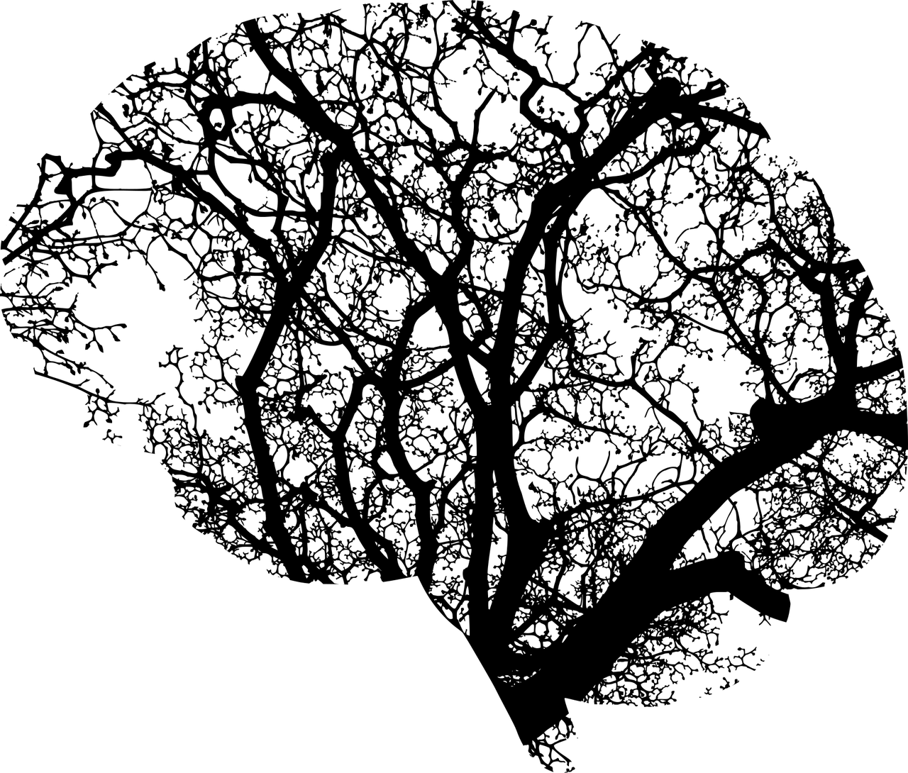 Tree of life black and white clipart clipart freeuse download Synchronicity, the soul and our mental health | TIME IS ART clipart freeuse download