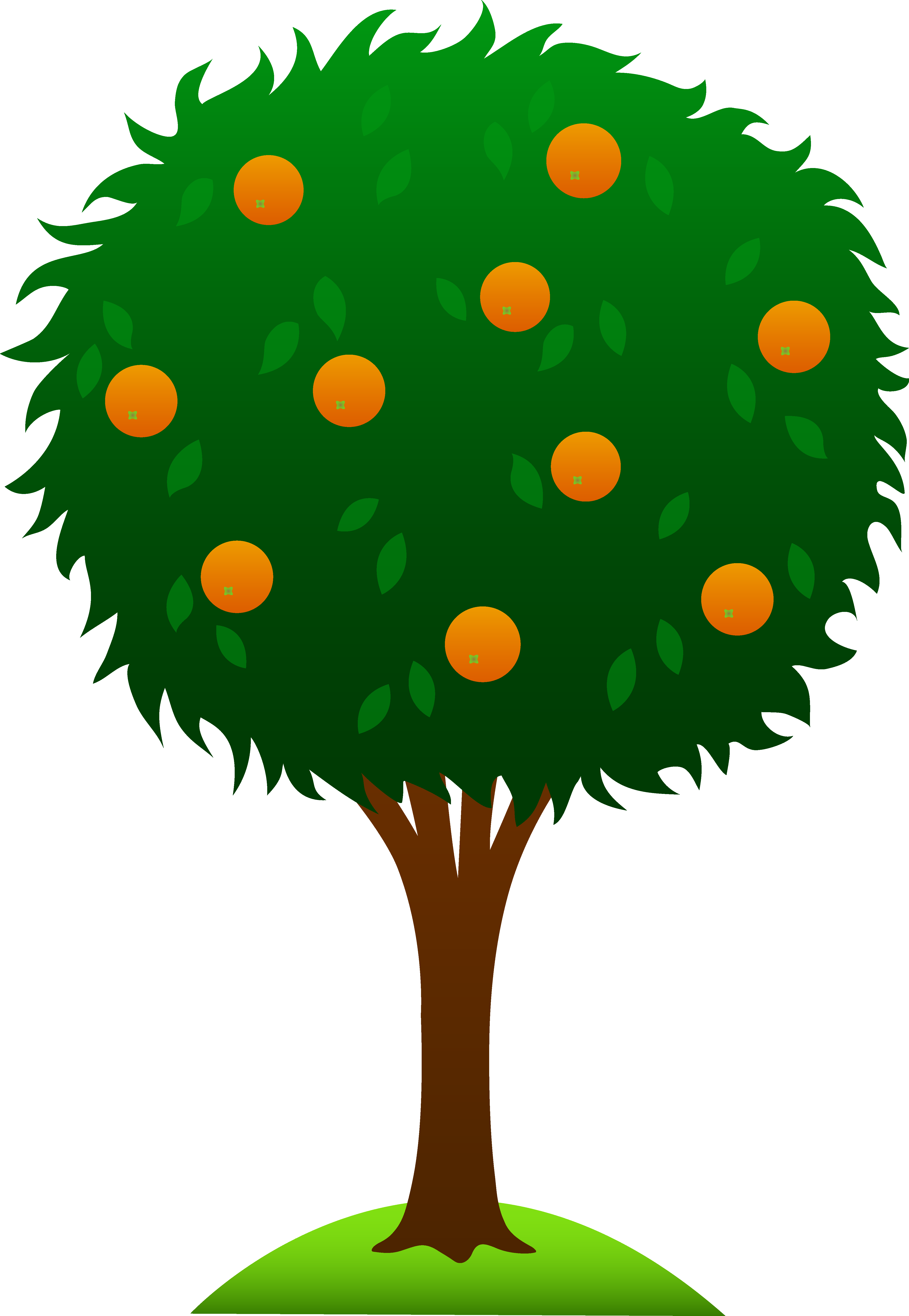 Peach clipart peach tree, Peach peach tree Transparent FREE ... jpg free download