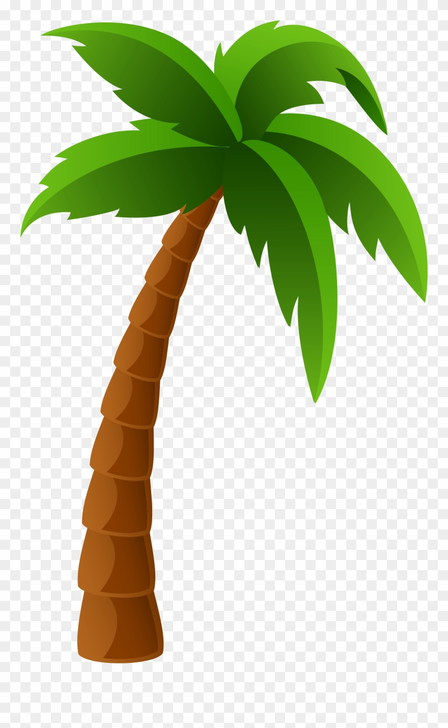 Permalink To Palm Clipart Pencil Clipart - Palm Tree Clipart ... jpg library library