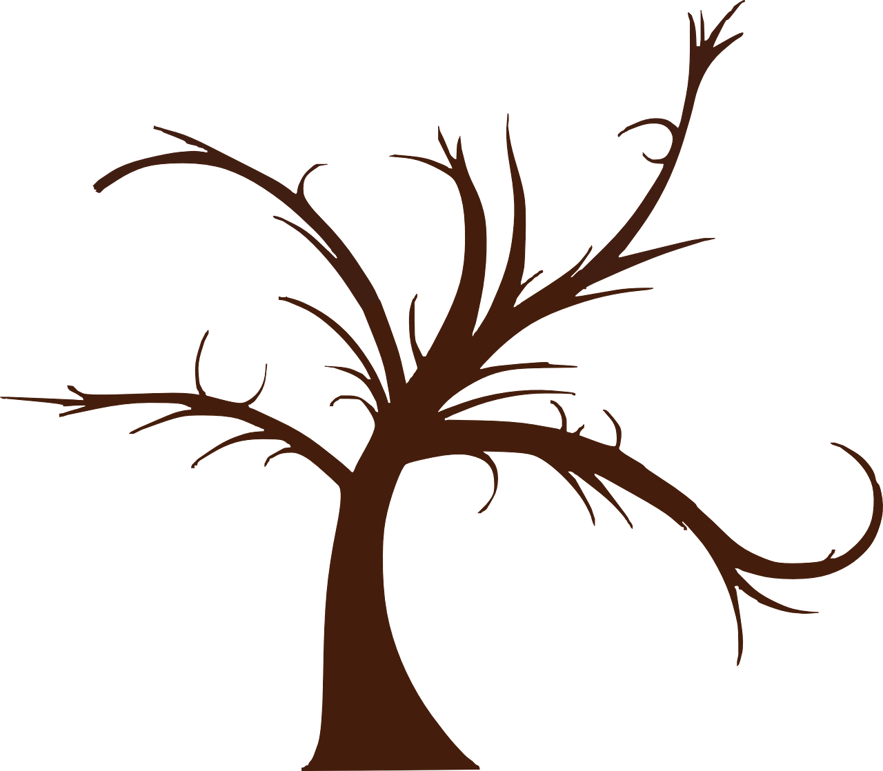 Tree stencil clipart jpg freeuse How to draw a tree: free printable tree stencils, 16 pics - HOW-TO ... jpg freeuse