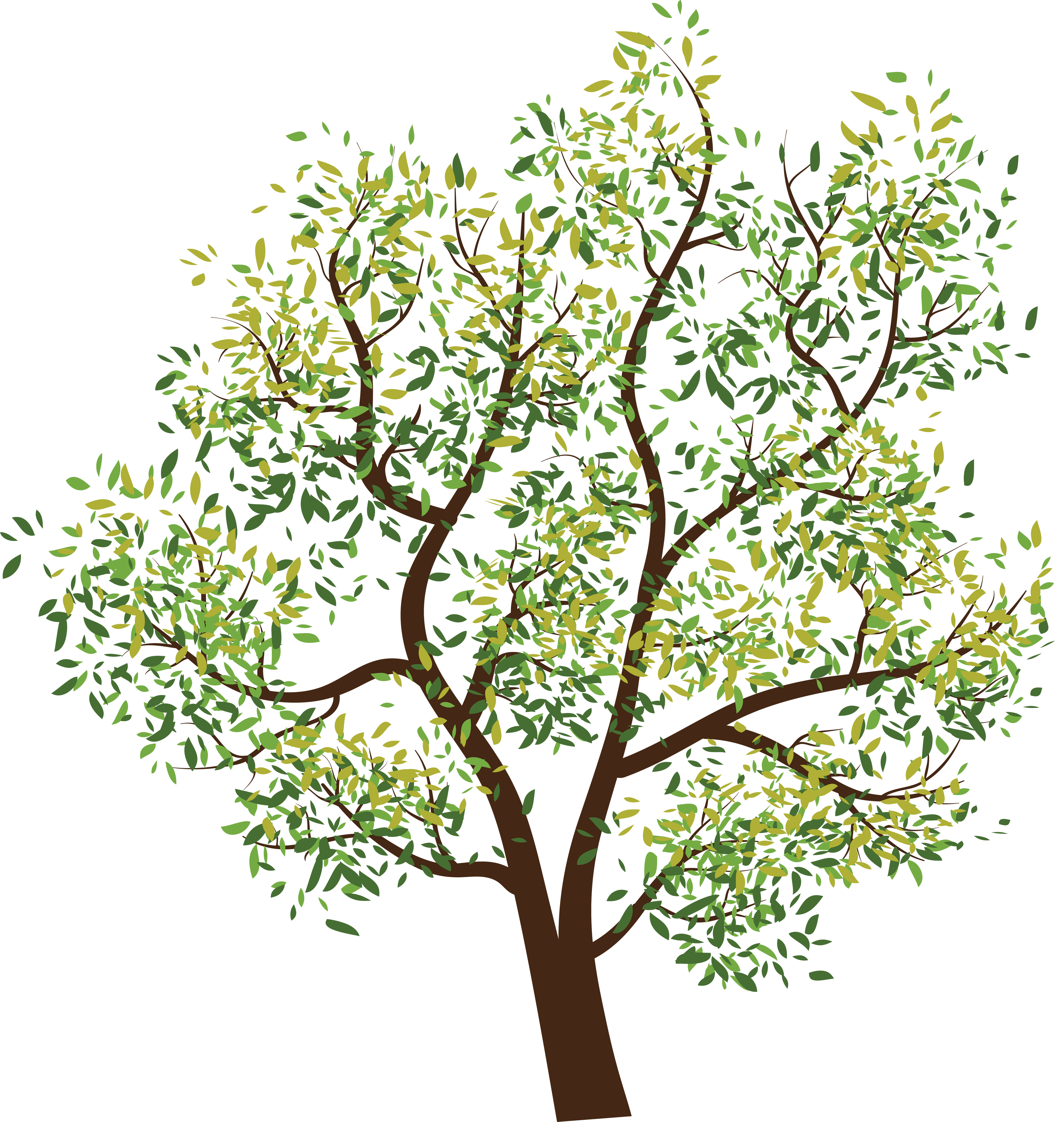 Tree stick clipart clear background clipart black and white download Tree png images, pictures, download free clipart black and white download