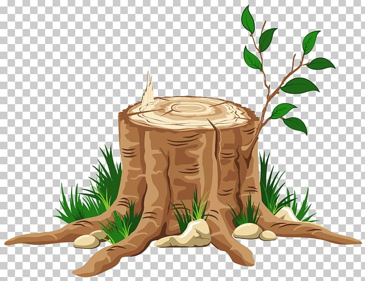 Tree Of Jesse Bible The Jesse Tree Symbol PNG, Clipart ... picture free library