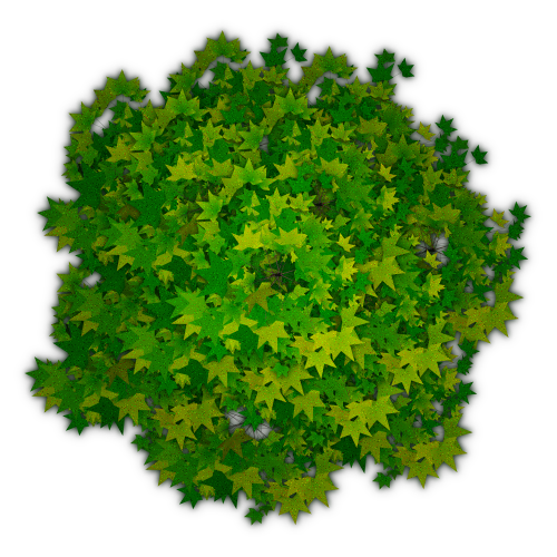 Tree top view clipart for photoshop library Photoshop Tree Top View Png #4129 - Free Icons and PNG ... library