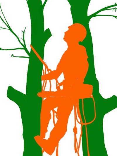 Tree trimmer clipart graphic ATLANTA TREE SERVICE - ARBORIST graphic