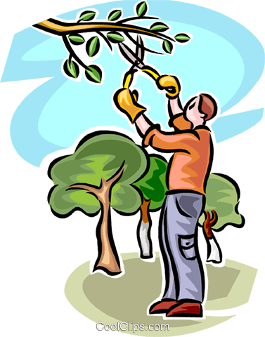 Tree trimmer clipart image library library 25+ Clip Art Tree Trimmers Landscaping Pictures and Ideas on ... image library library