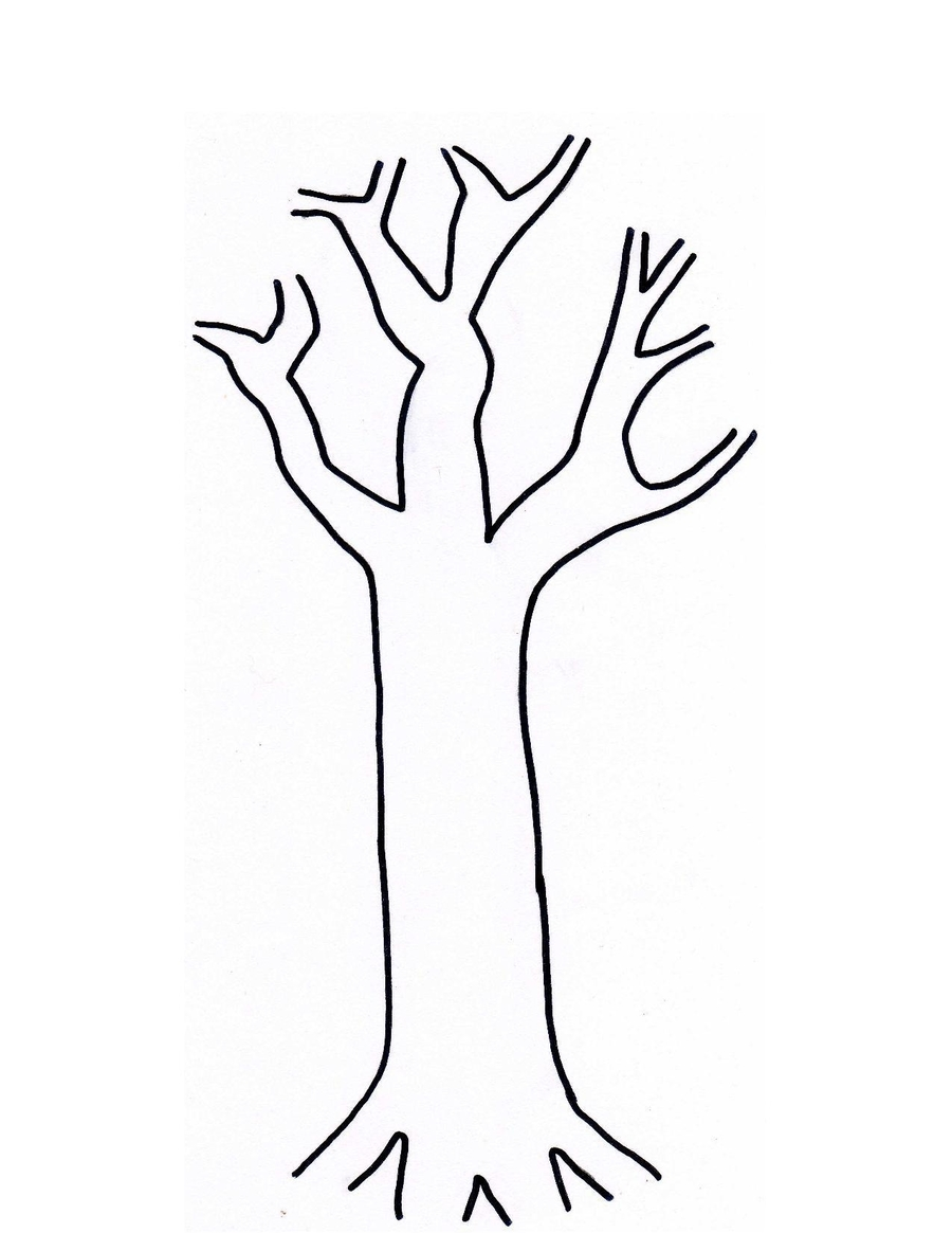 Download tree trunk template clipart Tree Trunk Branch ... png transparent stock