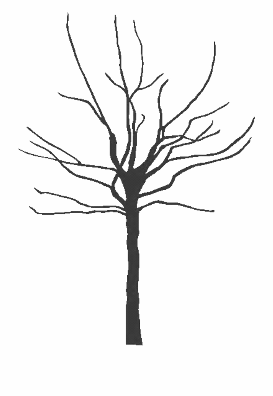 Com Tree Black 300dpi Copy Pluspng - Bare Clipart Tree ... clip library