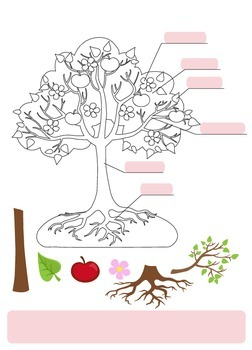 Tree with fruits clipart black and white banner freeuse Parts of Tree.Clipart.Tree structure trunk, root, branch, fruit, leaf, root banner freeuse