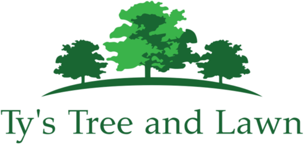Tree with lawn clipart clip free stock About clip free stock