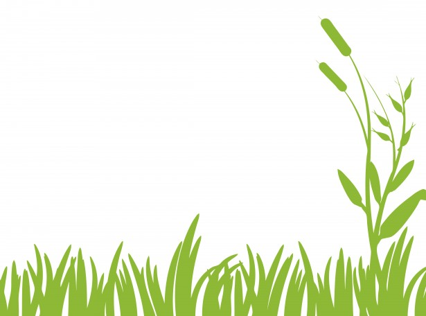 Tree with lawn clipart transparent library Grass Clipart   Free Download Clip Art   Free Clip Art   on ... transparent library