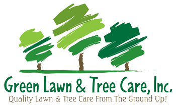 Tree with lawn clipart banner Green Lawn & Tree Care, Inc., Quality Lawn and Tree Care in ... banner