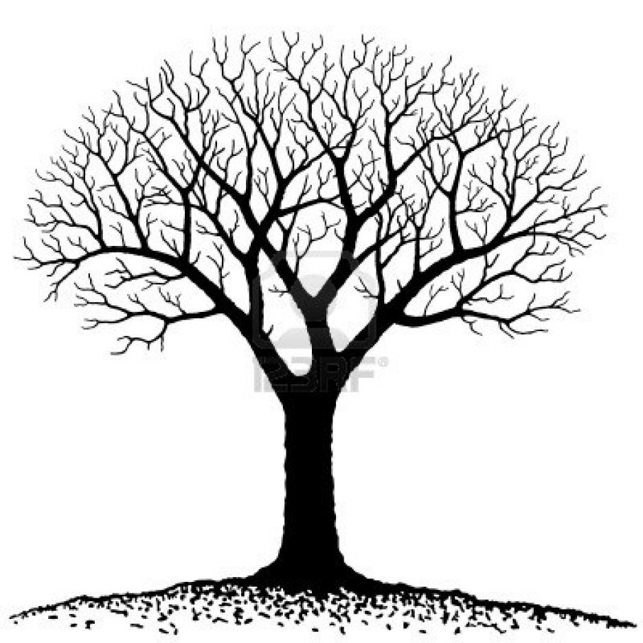 Tree with no leaves clipart black and white clip royalty free Bare Tree Clipart Black And White | Free download best Bare ... clip royalty free