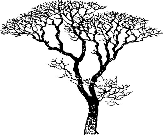 Tree with no leaves clipart black and white picture transparent stock Free Black And White Tree Drawing, Download Free Clip Art ... picture transparent stock