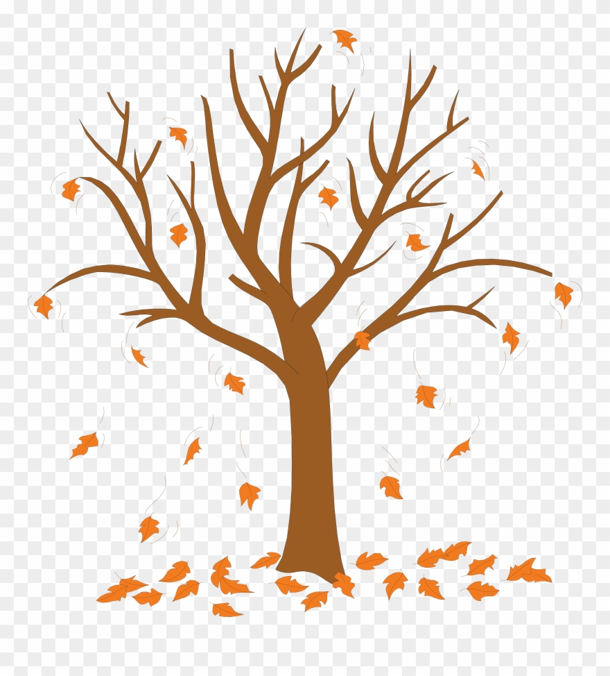 Trees Without Leaves Coloring Pages - Tree With Leaves ... picture royalty free download