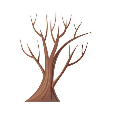 Tree without leaves clipart 2 » Clipart Station png black and white library