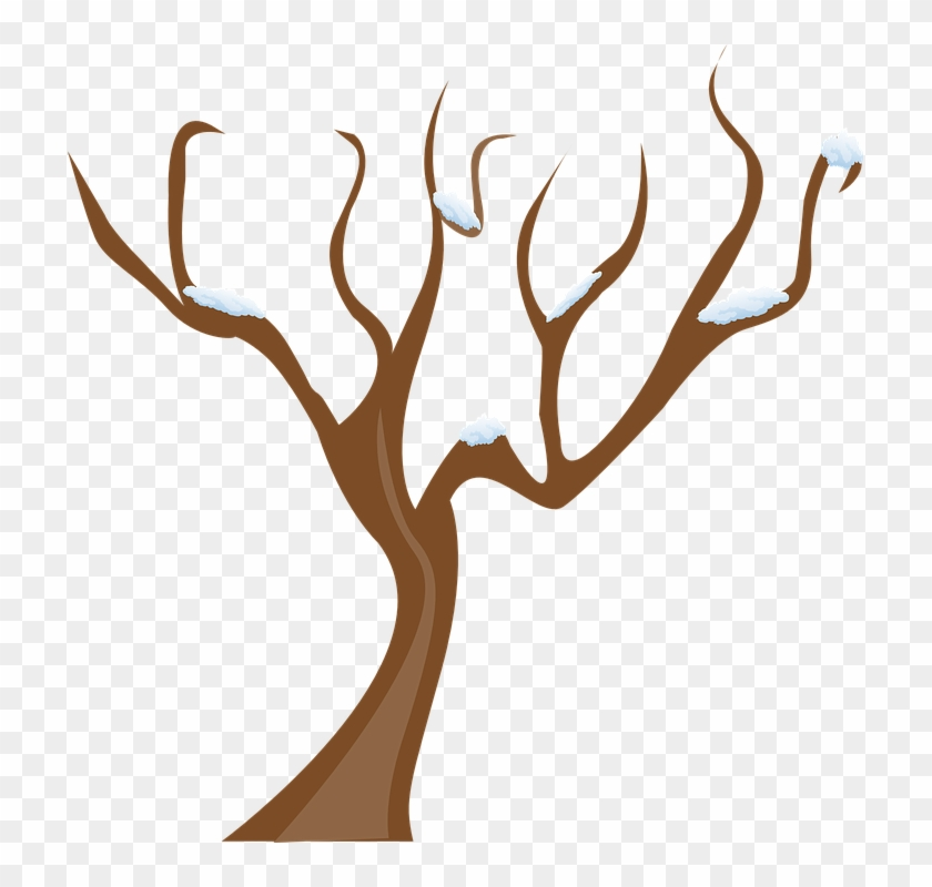 Season, Tree, Winter, Snow, Cold - Tree Without Leaves ... vector freeuse stock