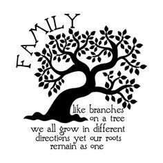 library of tree quote clip library png files