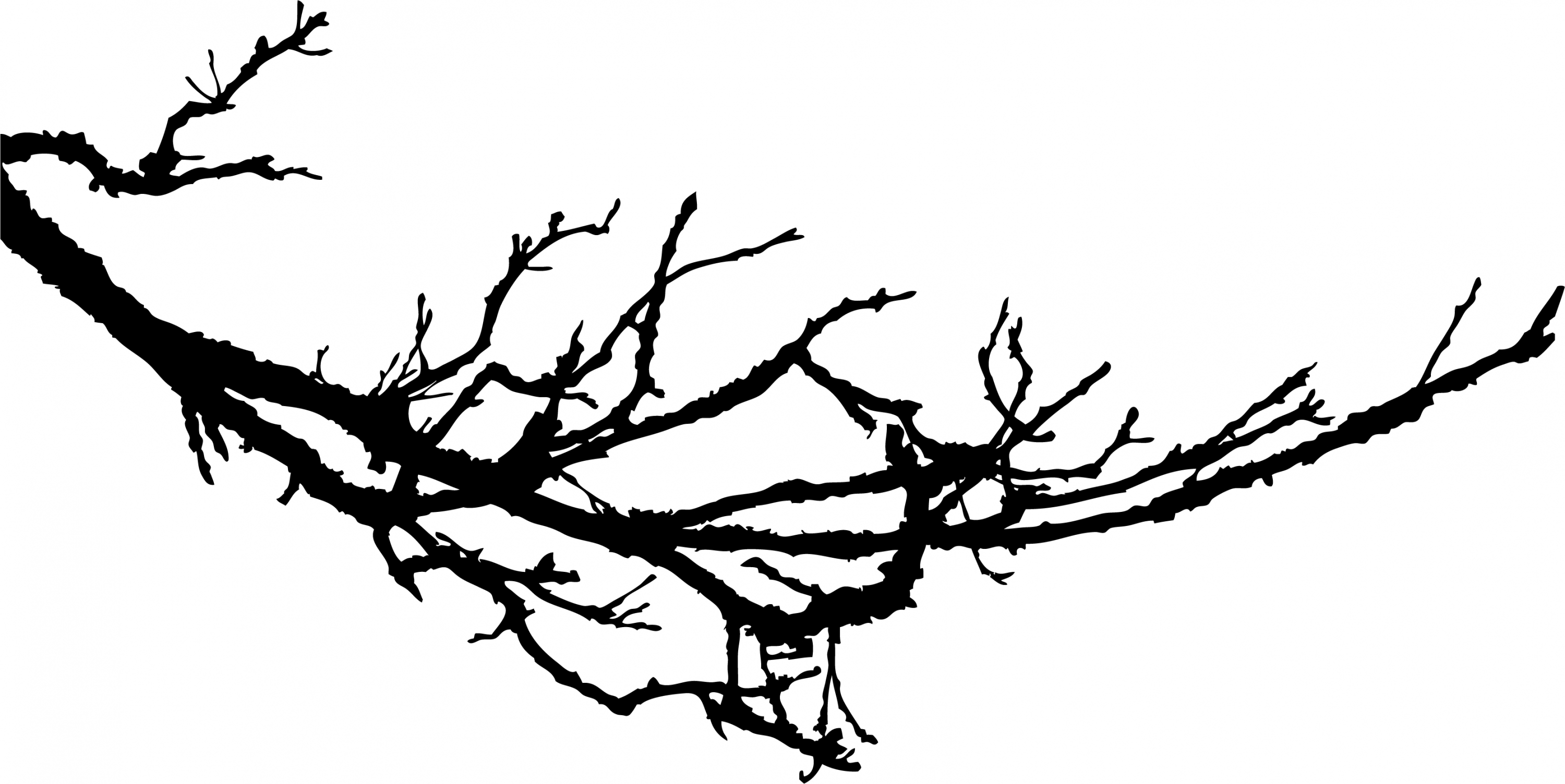 Tree with tree branches clipart picture free stock Tree branch breaking clipart - ClipartFox picture free stock