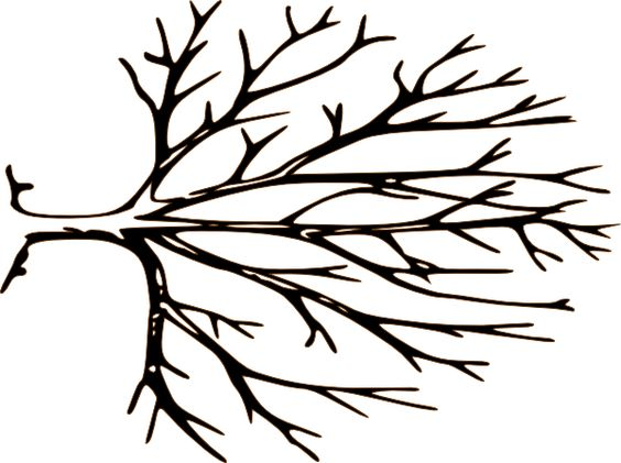 Tree with tree branches clipart vector free library Tree Branches Clip Art & Tree Branches Clip Art Clip Art Images ... vector free library