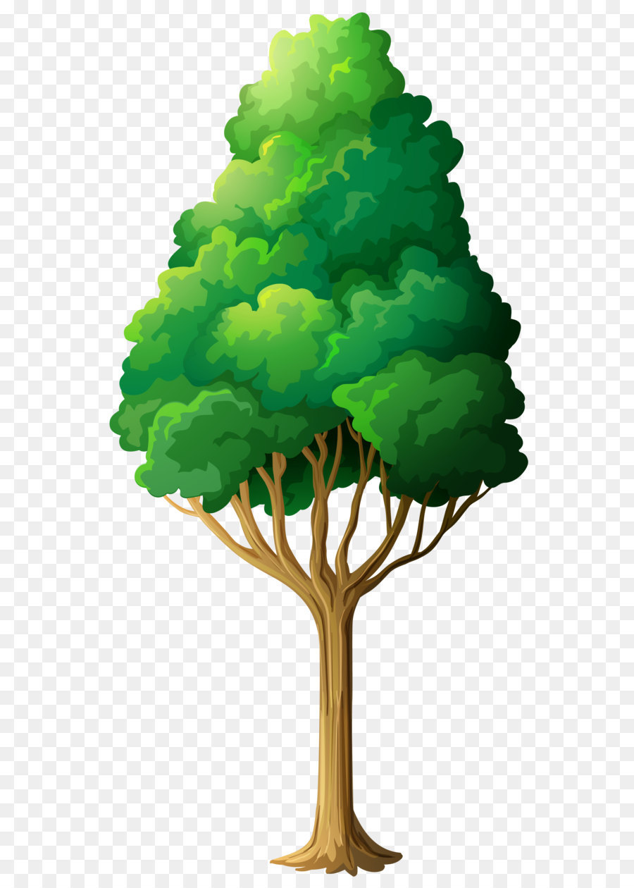 Treepng clipart banner stock Oak Tree Drawing png download - 2648*5072 - Free Transparent ... banner stock